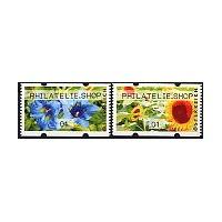 2011. Gentiana and sunflower (Flowers 3)