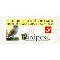 2010. Birdpex Antwerp Expo - Bruxelles 1000 Brussel (Barn owl)