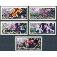 2002. Wild flowers of Cyprus