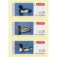 2011. Danish birds (1) - Ducks