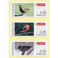 2012. Danish birds (2)