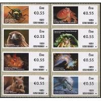 2010. Animales y vida marina de Irlanda (1)