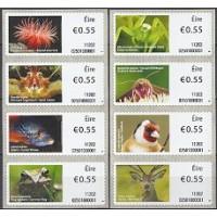 2011. Animales y vida marina de Irlanda (2)