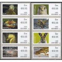 2012. Irish animals and marine life (3)