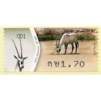 2011. Oryx leucoryx (Órice de Arabia)