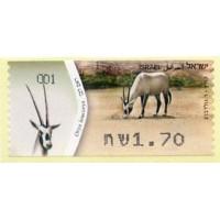 2011. Oryx leucoryx (White oryx)
