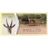 2011. G. gazella acaciae (Gazelle)
