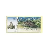 2012. Dusky grouper (Epinephelus m.)